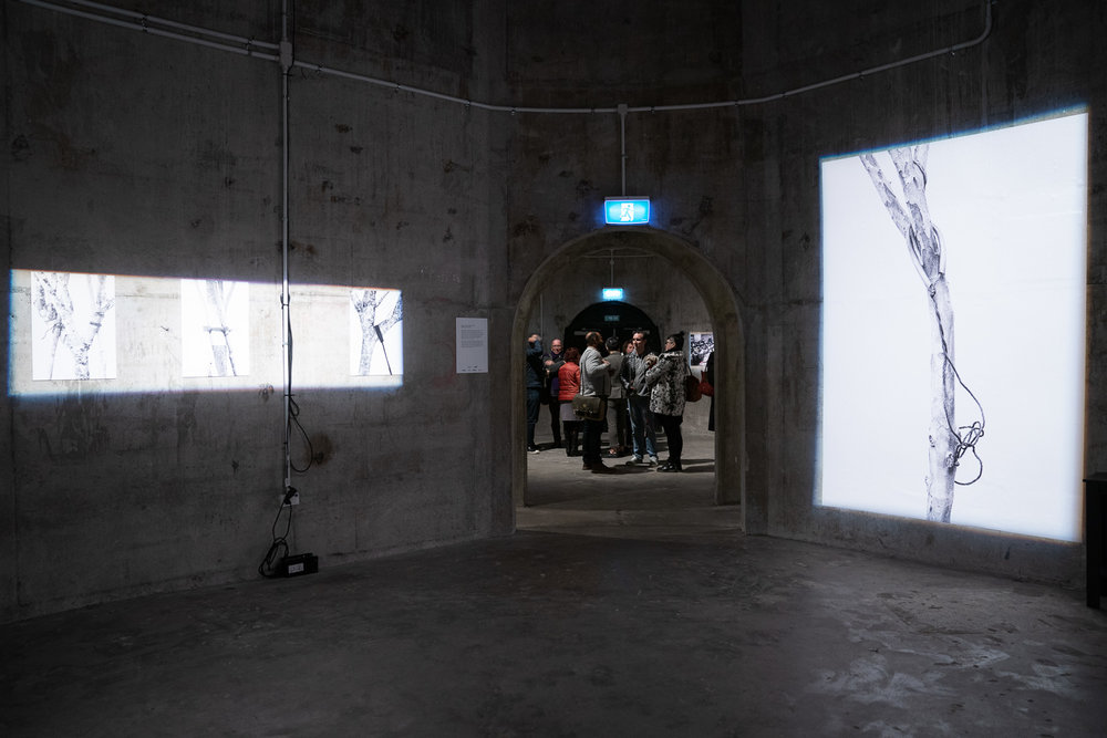 Work by Woong Soak Tengmat the launch of the Auckland Festival of Photography