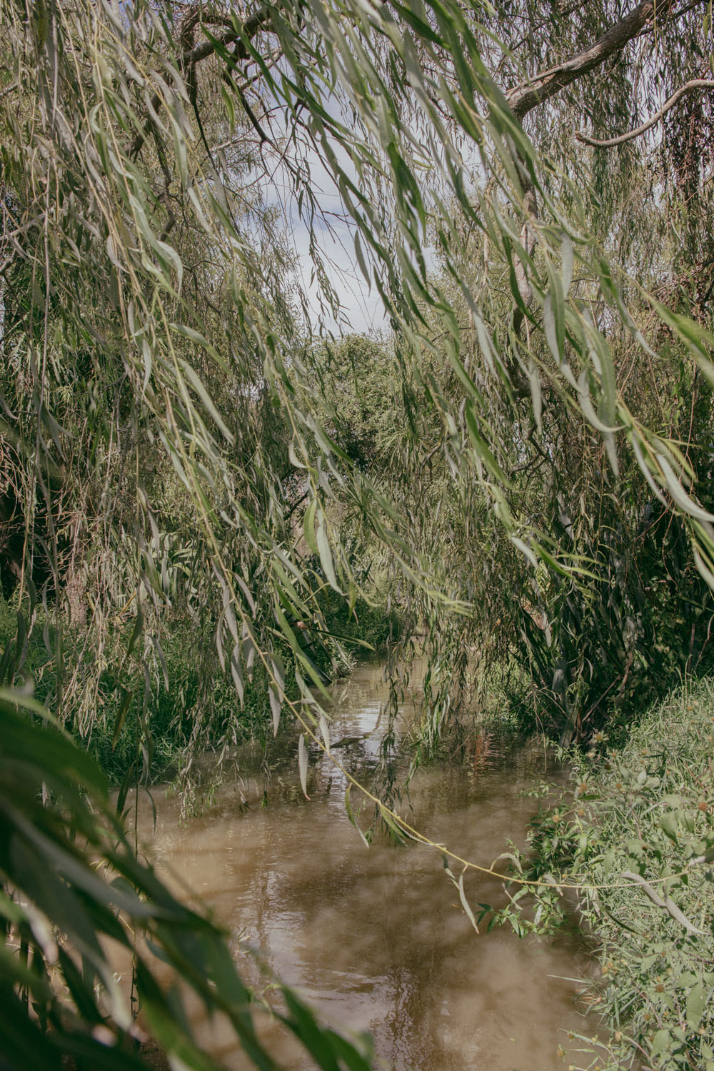 Kate van der Drift ,  Canal, From the River East , 2018, archival pigment print on matte photo rag, edition of 3, 900mm x 600mm