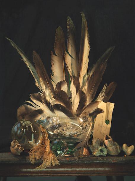 Fiona Pardington , Still Life with Albatross feathers, Pounamu and Coral Hearts (Ripiro Beach),  2014