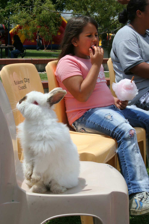 Magician's rabbit, Christmas Parade, Jack Pringle Park, 2 December 2005. (JBT6239)