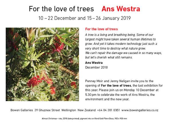 westra_trees.jpg