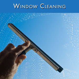 Window Cleaning Tile.jpg