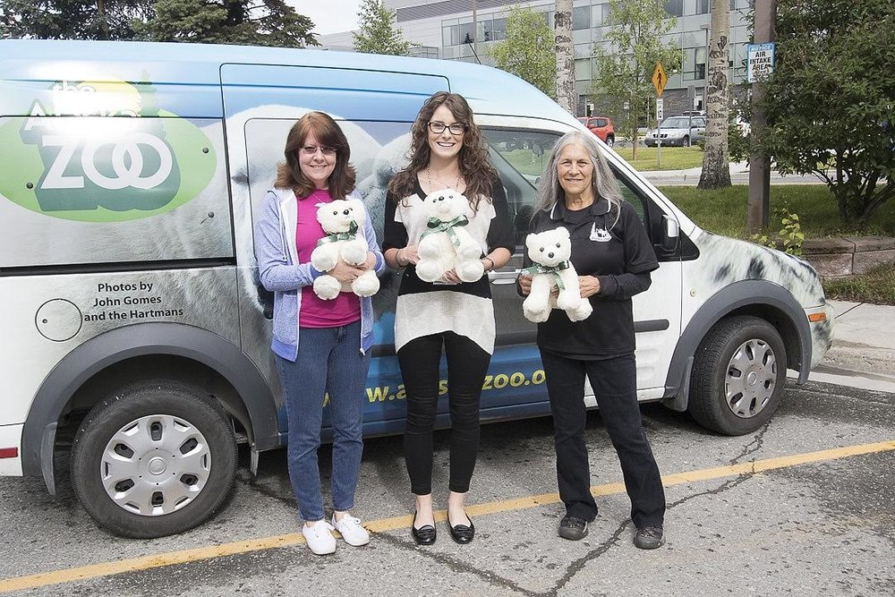 hospital bears delivery.jpg