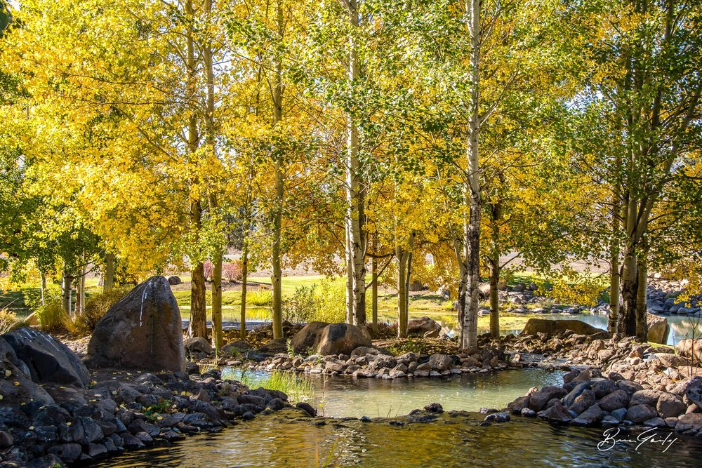 Fall Colors at the Running Y Ranch Resort - Image: Brian Gailey