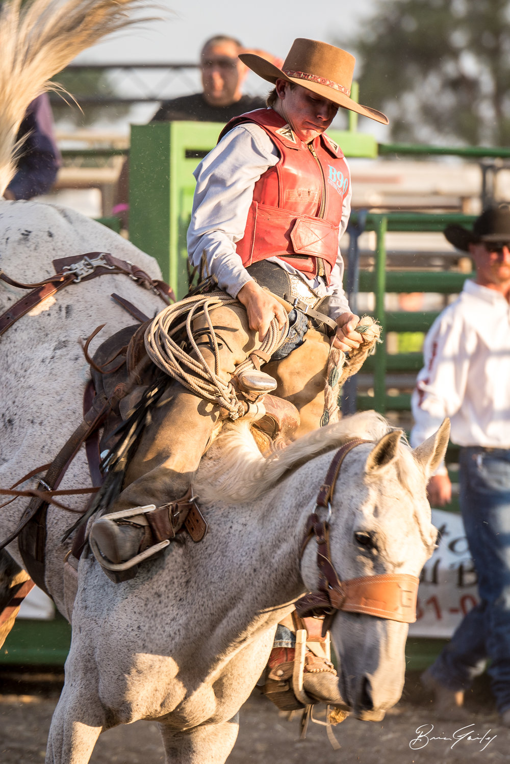 Let her buck! This cowboy holds on during the Beauty and the Beast Rodeo. Image:  Brian Gailey  Tulelake Butte Valley Fair 2017