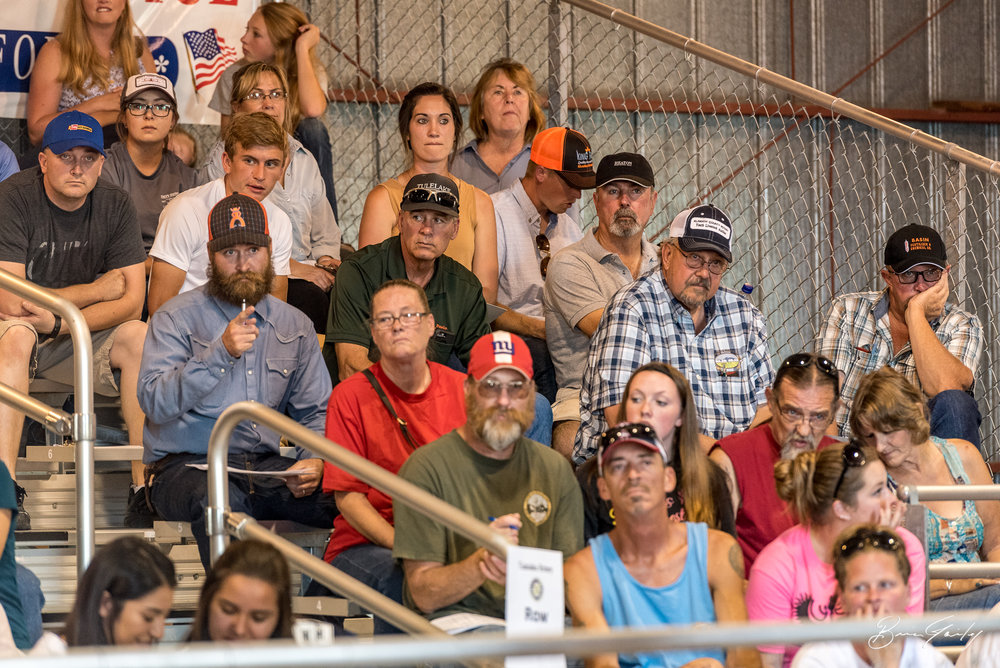A good crown was on hand for the Junior Livestock Auction. The man pointing is with Prather Ranch bidding on an animal that he later won.