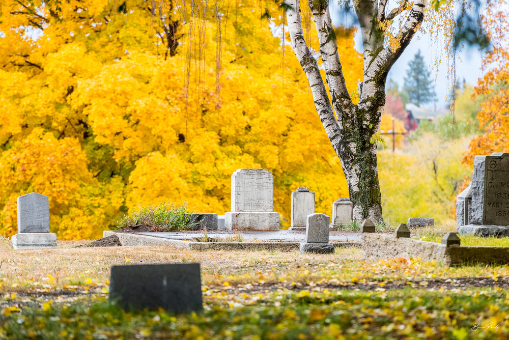 Fall colors of the Linkville Cemetery, Klamath Falls, Ore. Focused in the middle of the frame is the tombstone marker of Jacques Irwin Creear, Oct. 2, 1926 - Nov. 28, 1926 (57 days old). Image: Brian Gailey
