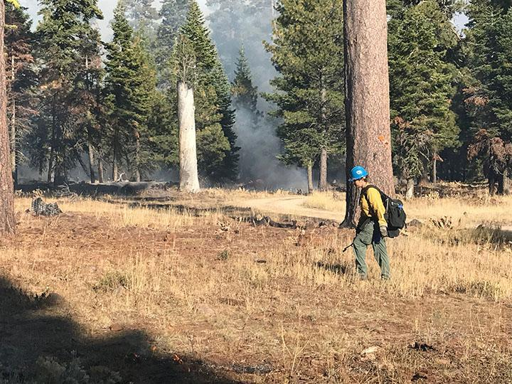 Firefighter on Burnt Willow RX Fall 2017
