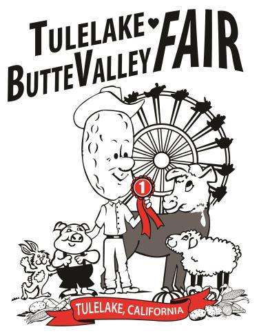 TBV Fair.jpg