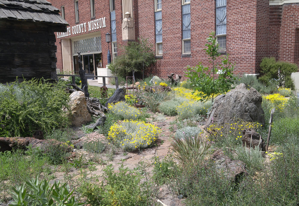 A tour of native trees and shrubs growing at the Klamath County Museum will be offered Saturday, Feb. 24. (Submitted Photo)