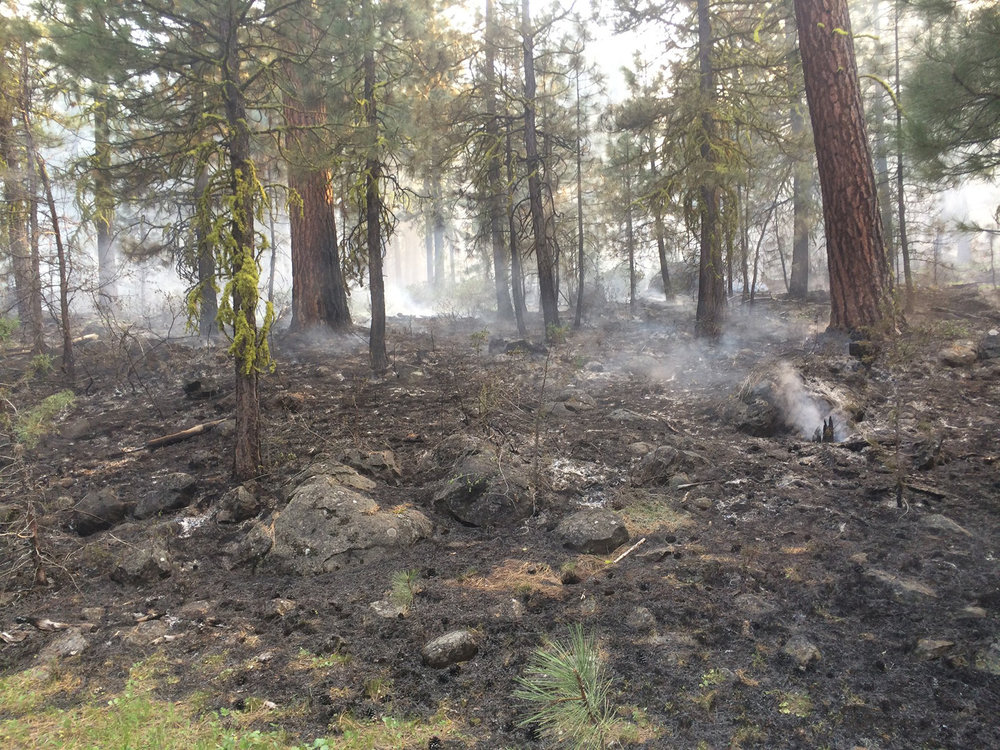 Willow Springs Fire, Bly, Oregon (SCOFMP)