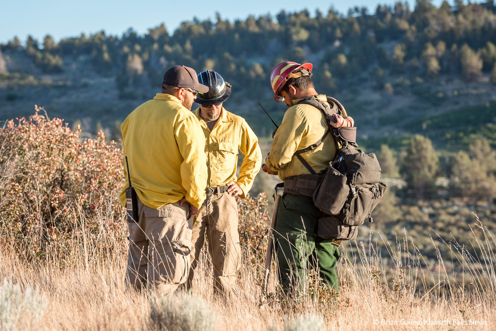 Firefighters from the Oregon Department of Forestry work the Link Trail Fire in Klamath Falls. July 10, 2018. (Brian Gailey)
