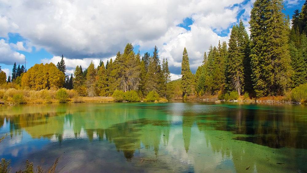 Kimball State Park, Klamath County, Oregon (Image: Jan Hazevoet,  Flickr )