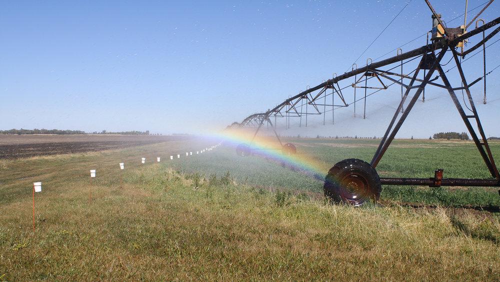 Center pivot irrigation. (Image: carlpenergy , Flickr)