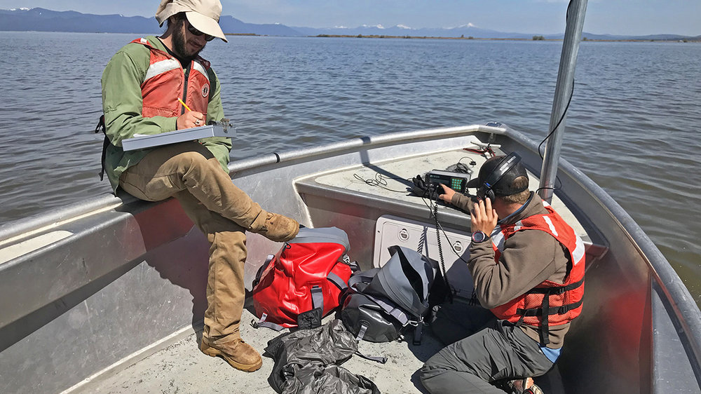 Chris Derrickson, summer technician from Oregon State University, listens for the 'chirp' of a radio-tagged sucker as the scanner picks up the signal from the murky waters of Upper Klamath Lake, while Jordan Ortega, Oregon State University field technician, records data. Radio tracking is a new phase of the endangered sucker rearing program in the Klamath Basin. Credit: Kirk Groves/USFWS