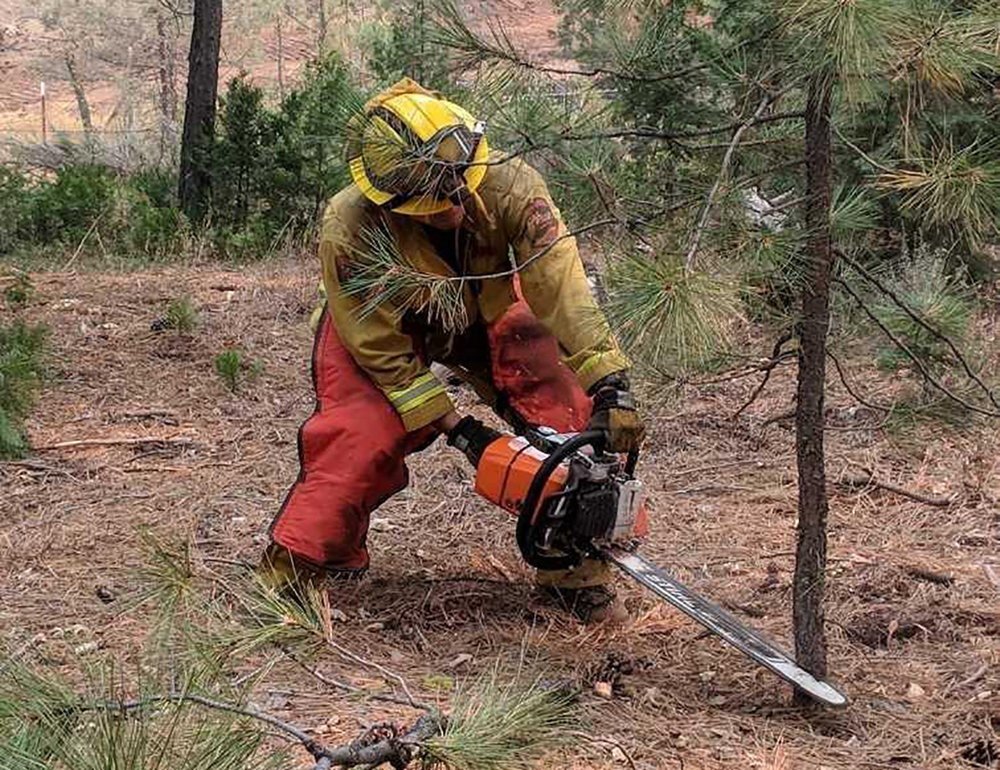A firefighter clears around structures on the Stone Fire.Aug. 21, 2018 (Inciweb)