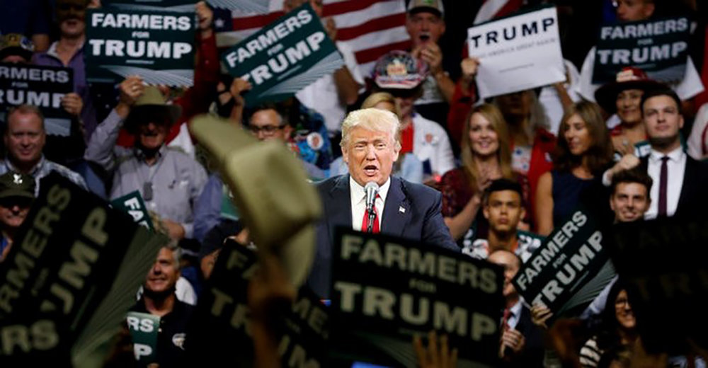 Then- Republican presidential candidate Donald Trump holds a rally with supporters in Fresno, California in 2016. Photo by Jonathan Ernst/Reuters, Family Farm Alliance.
