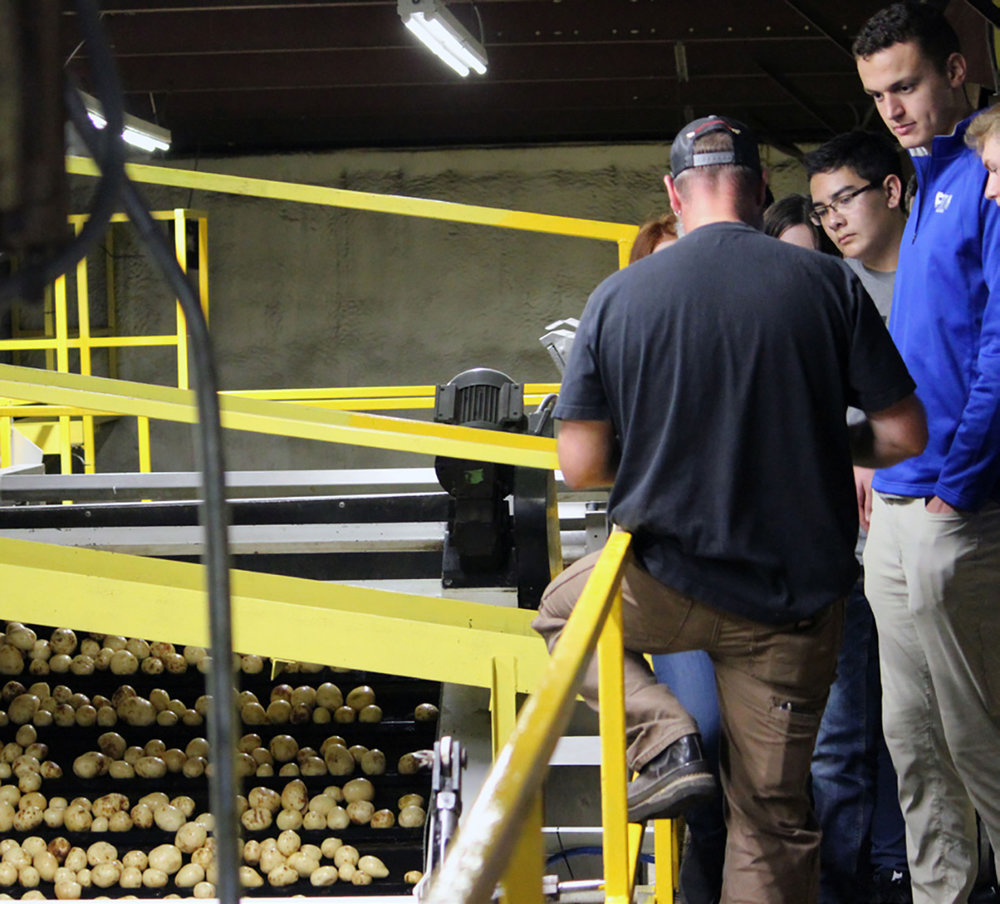 Students tour the Gold Dust Potatoes facility