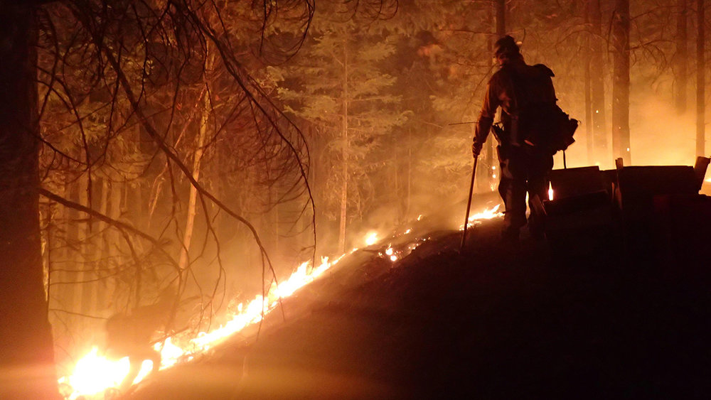 File Photo - A wildland firefighter conducts burnout operations on the Miles Fire, July 27-28, 2018. (Inciweb/Northwest IMT #13)