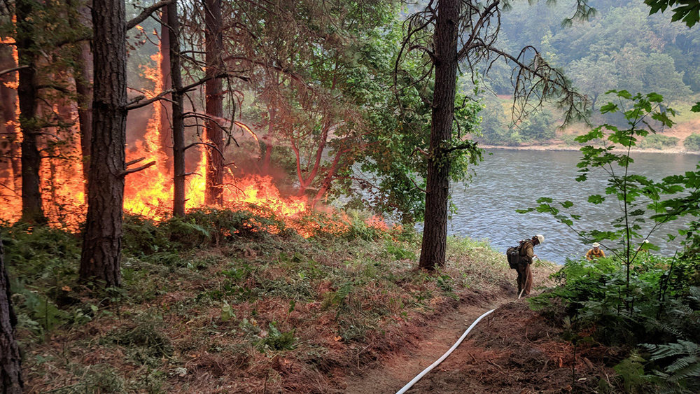 The Taylor Creek Fire fire burns next to a control line by the Rogue River. A system of hoses and pumps provides water along the hand line. (Inciweb)