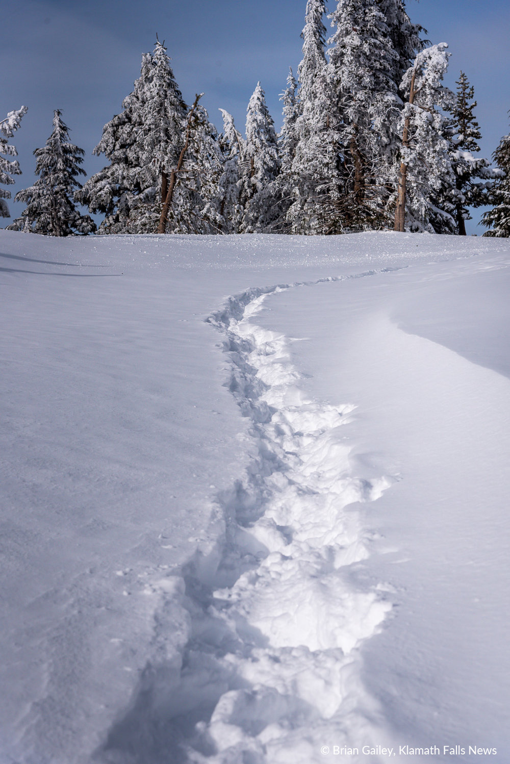 Footsteps in the snow lead to an overlook on the rim of Crater Lake National Park. February 7, 2019 (Image by, Brian Gailey / Klamath Falls News)