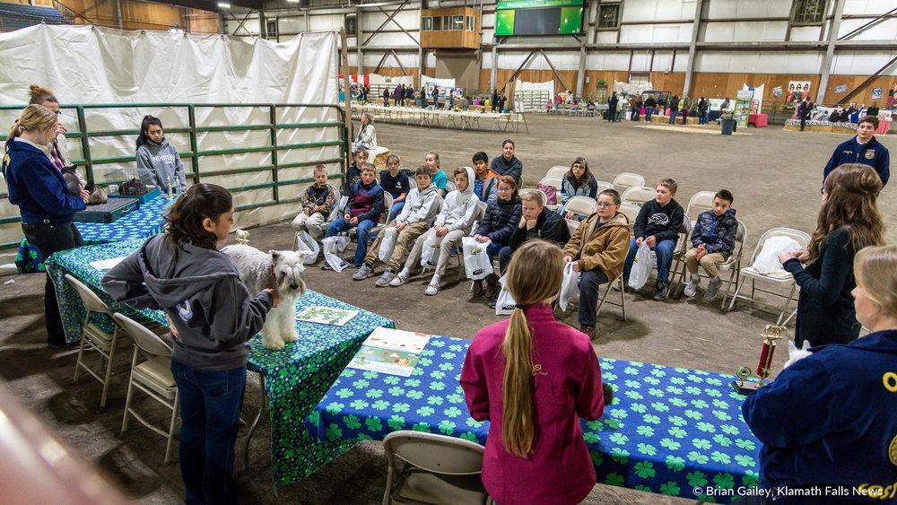 2019 Farm Expo. February 21, 2019. Image by Brian Gailey/Klamath Falls News.