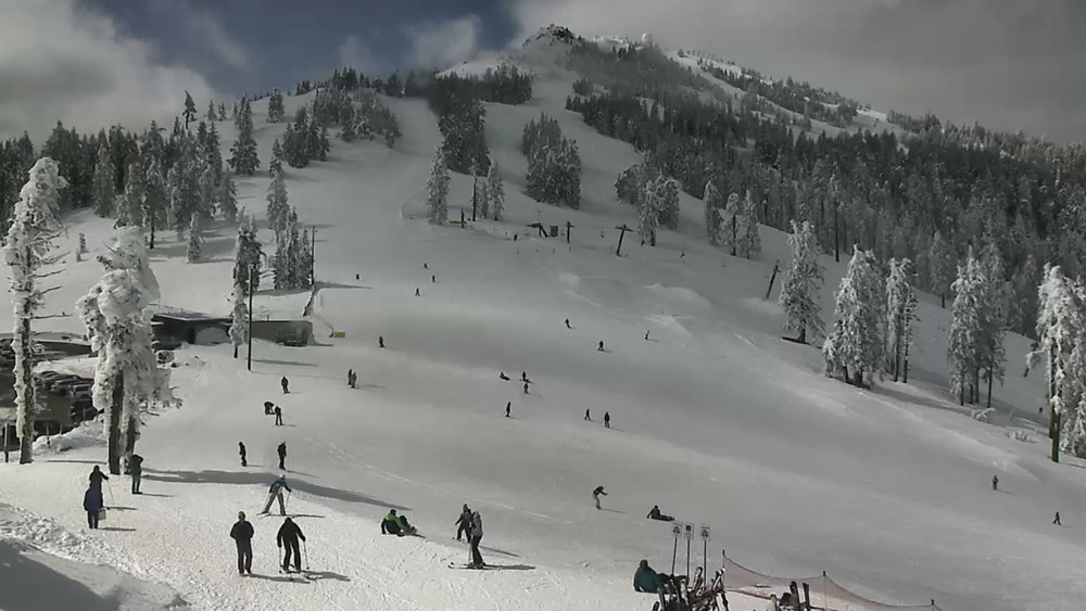 Lodge Camera, Mount Ashland. March 8, 2019