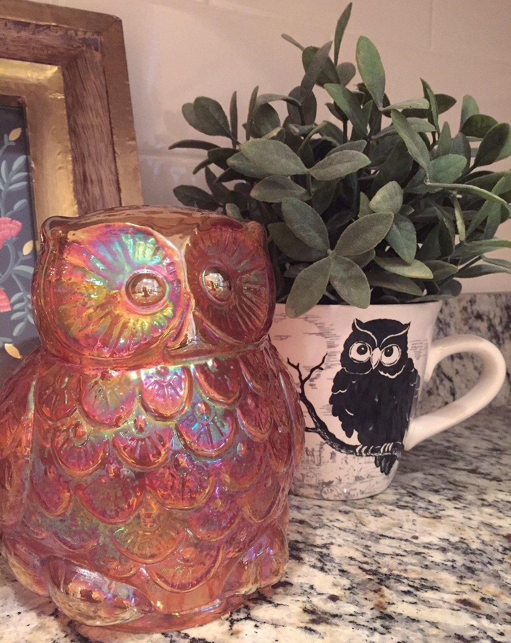 orange owl.jpg