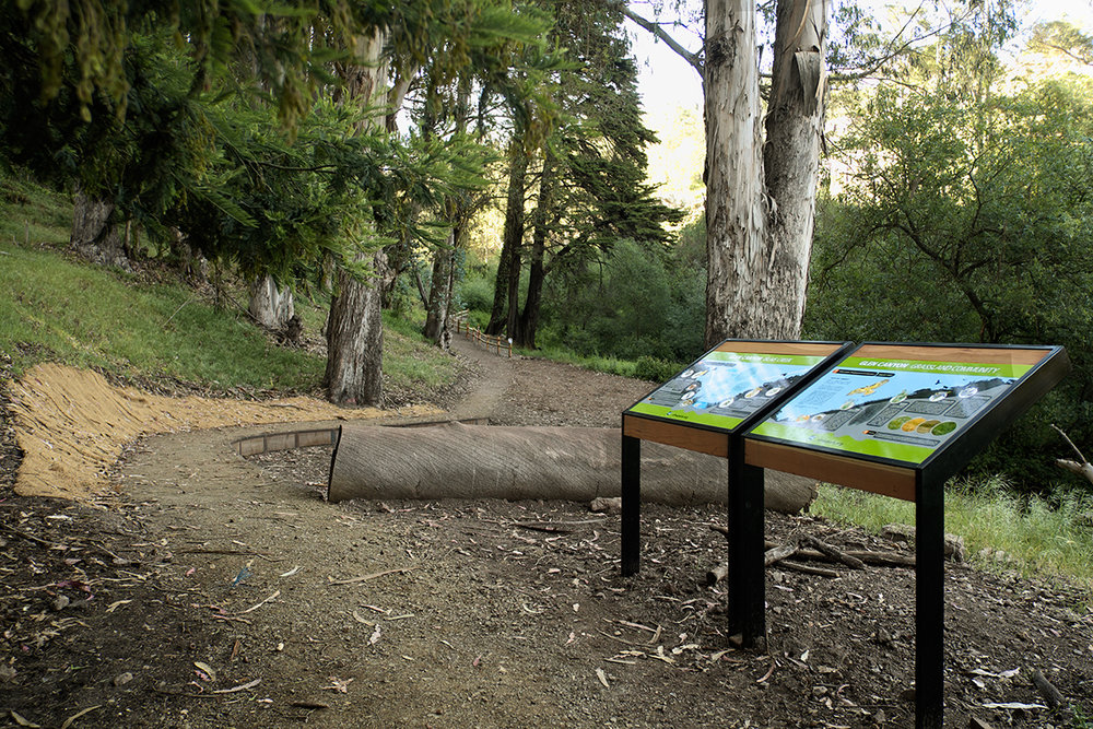 Creek & Grassland Interpretive Signage