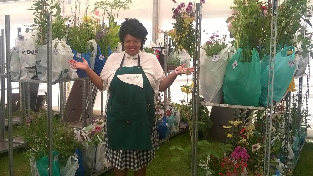 Franky Volunteering for Perennial