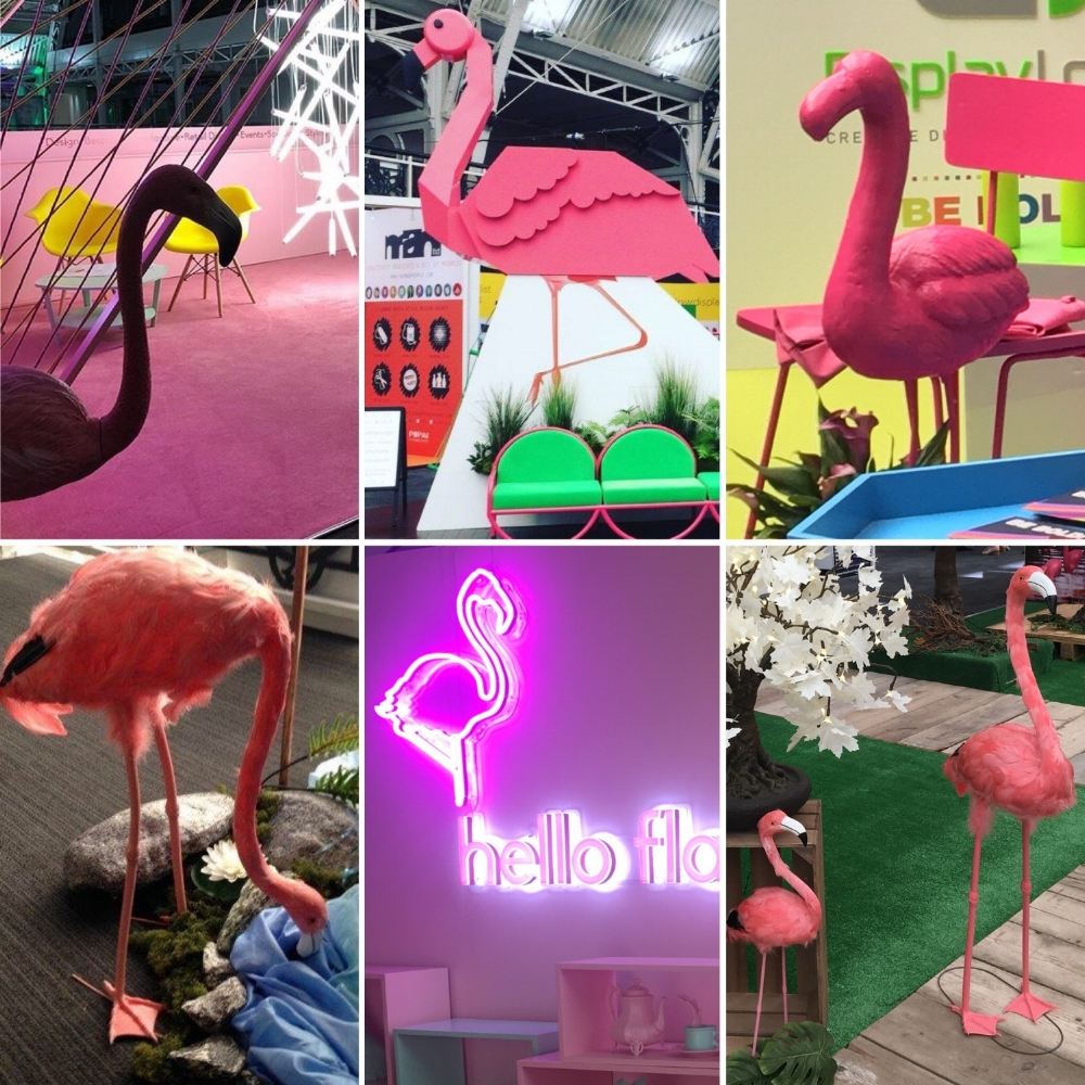 Hello Flamingo, County Display, Solus Lighting, Display Logic - VM & Display show 2018