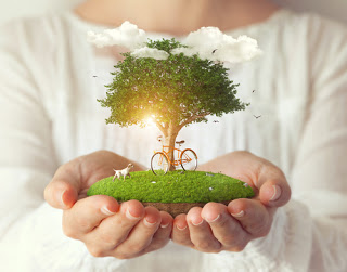 Woman holding tableau of tree and field in her hands