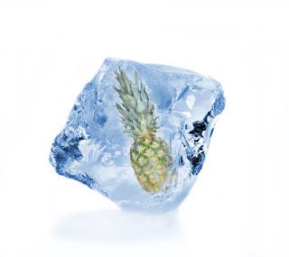 Pineapple in ice block