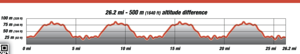 Er yes this is the elevation profile for the run, but at least you get to relax on the downhill four times and see your family cheering you on at the bottom each time...