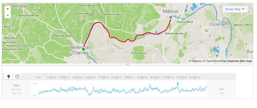 The Thames Marathon - 14km swim
