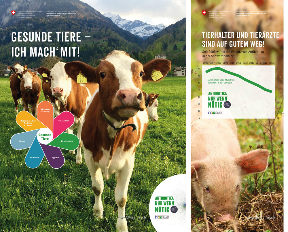 Messewände BLV zum Antibiotikaeinsatz bei Tieren