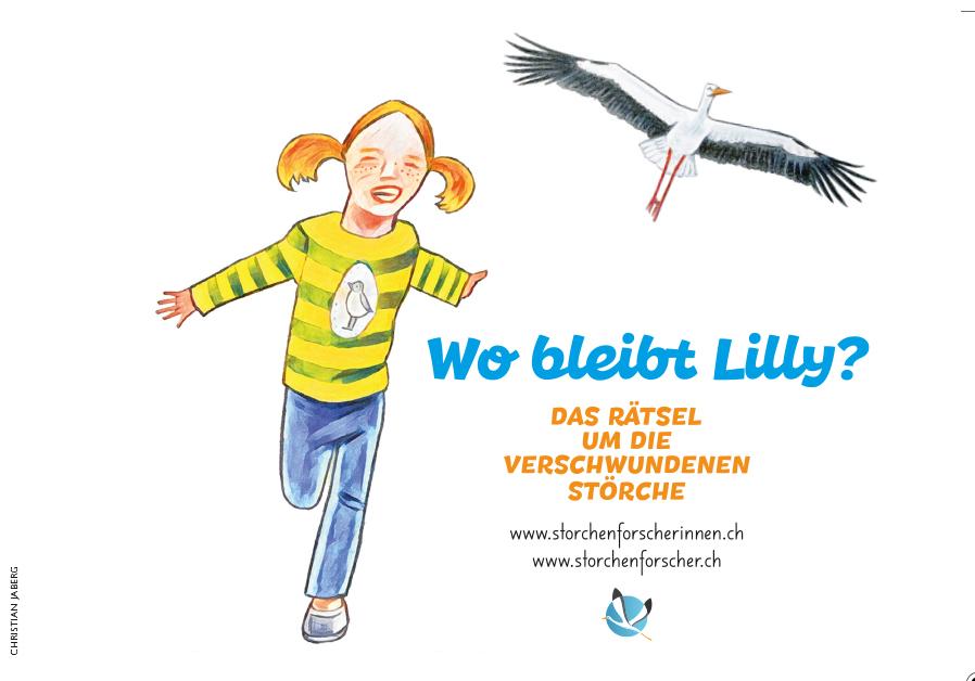 www.Storcherforscherinnen.ch