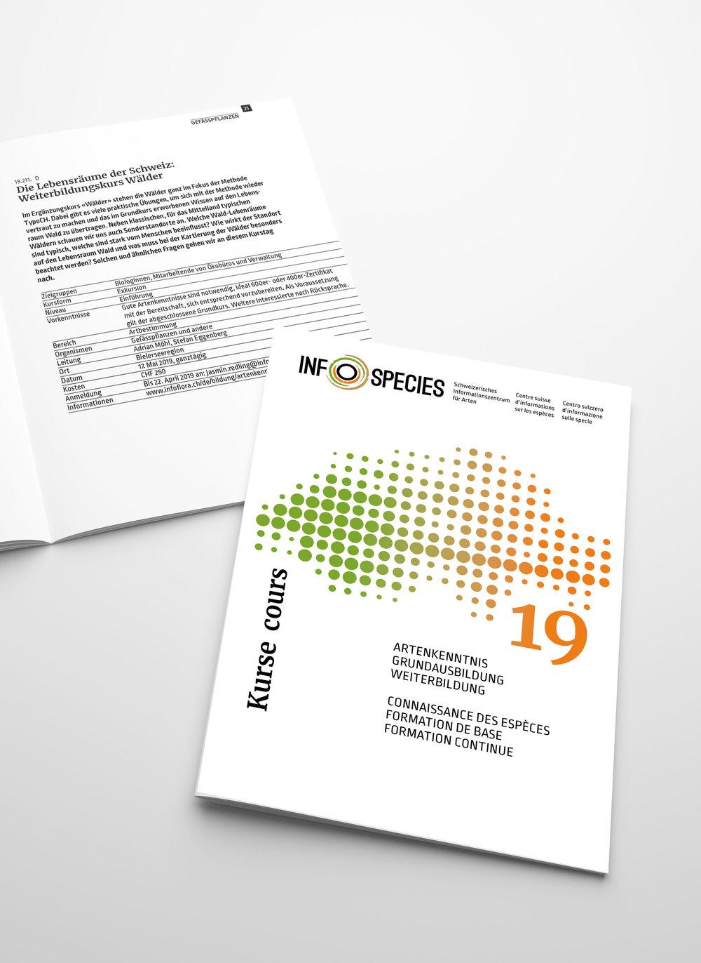 INFOSPECIES - Projektkoordination: Irene Küenzle, Co-LeiterinRedesign Gesamtauftritt: Christian Jaberg, jaberg.designWebsite:Ralph Thielen, Info Florawww.infospecies.chKursprogramm