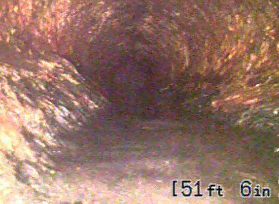 Image 51 ft.JPG