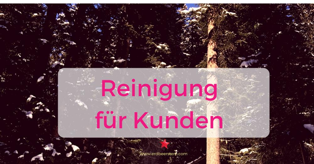 33-FB-und-Blog_-Reinigung-für-Kunden.png