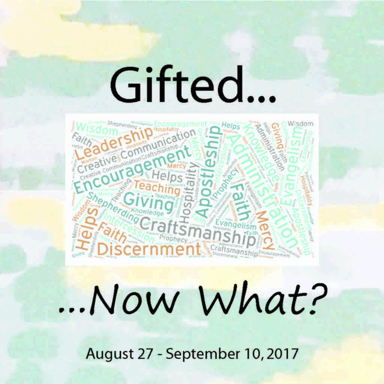 Gifted... Now What? -