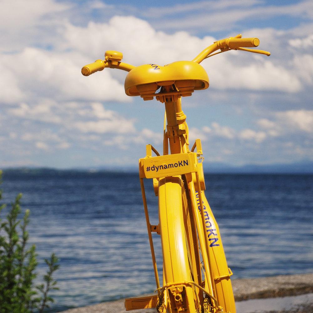 yellowbike.jpg