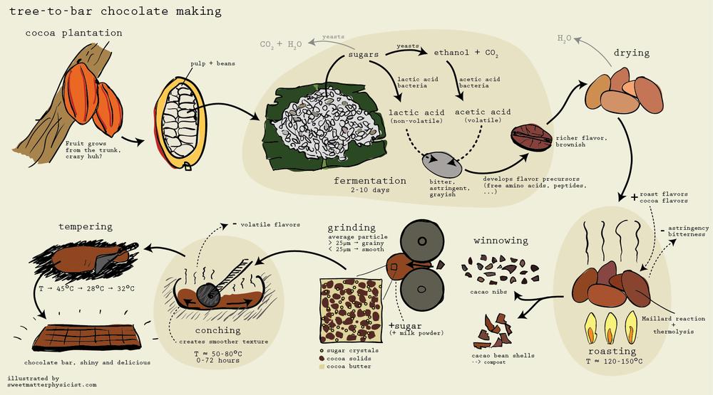 chocolate_making_process_scheme_big.png