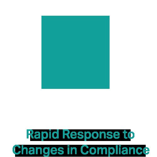 rapid-response-.png