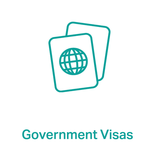government-visa.png