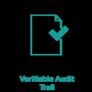 audit (1).png