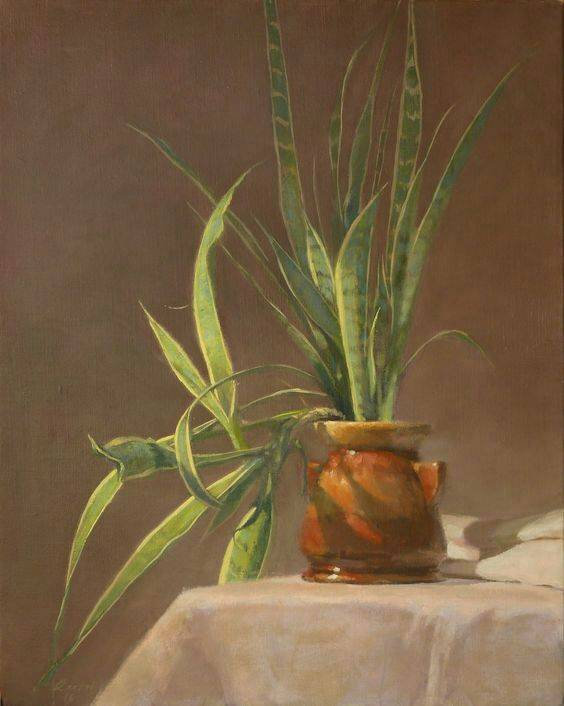 2014   Plant   Oil painting Canvas