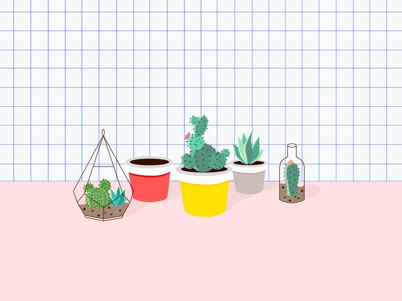 2017   My small plant   Illustration PS Wacom