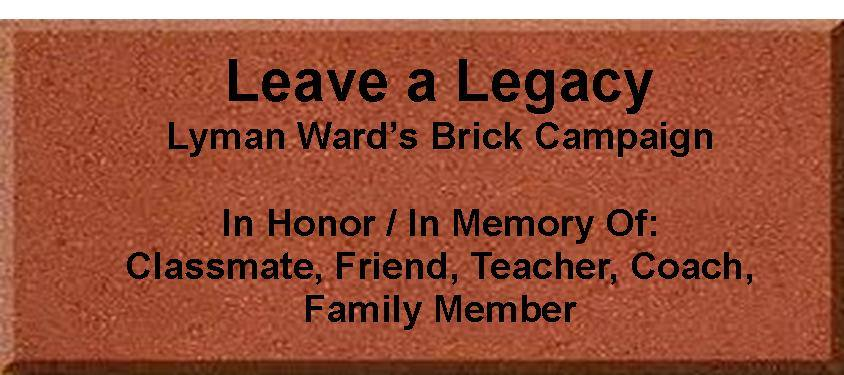 Brick-Campaign.jpg