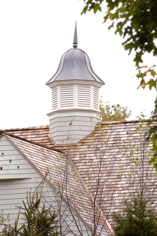 Cupola with copper finial